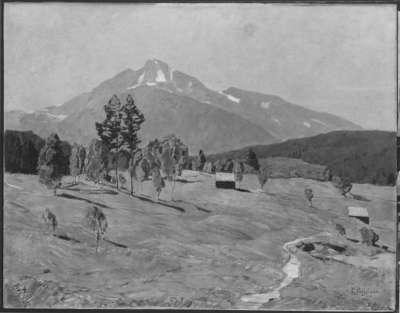 Bergmoos bei Seefeld in Tirol