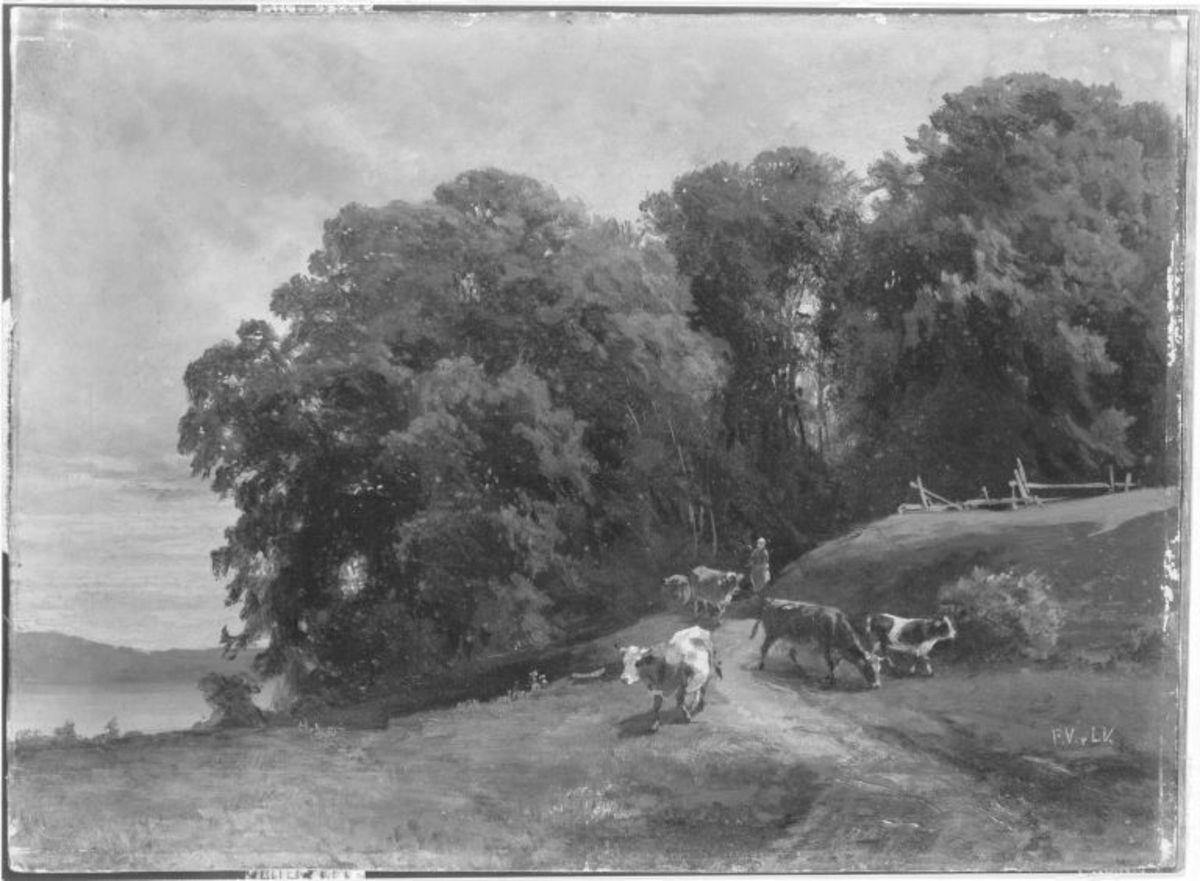 Baumlandschaft mit Kühen