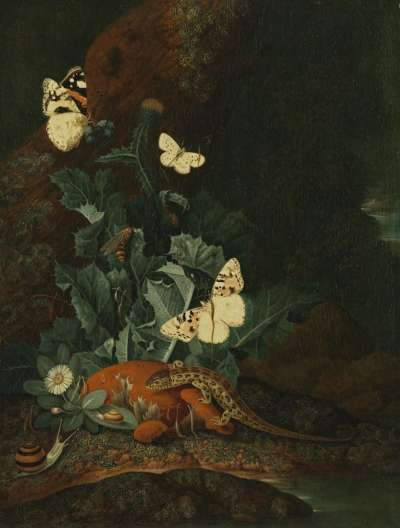 Stillleben mit Distel, Eidechse und Schnecke