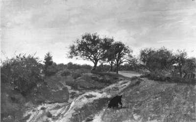 Rhönlandschaft