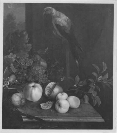 Früchtestück mit Papagei