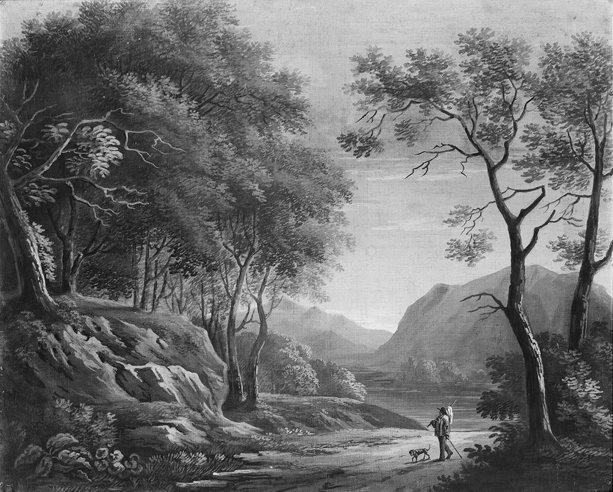 Waldige Gebirgslandschaft