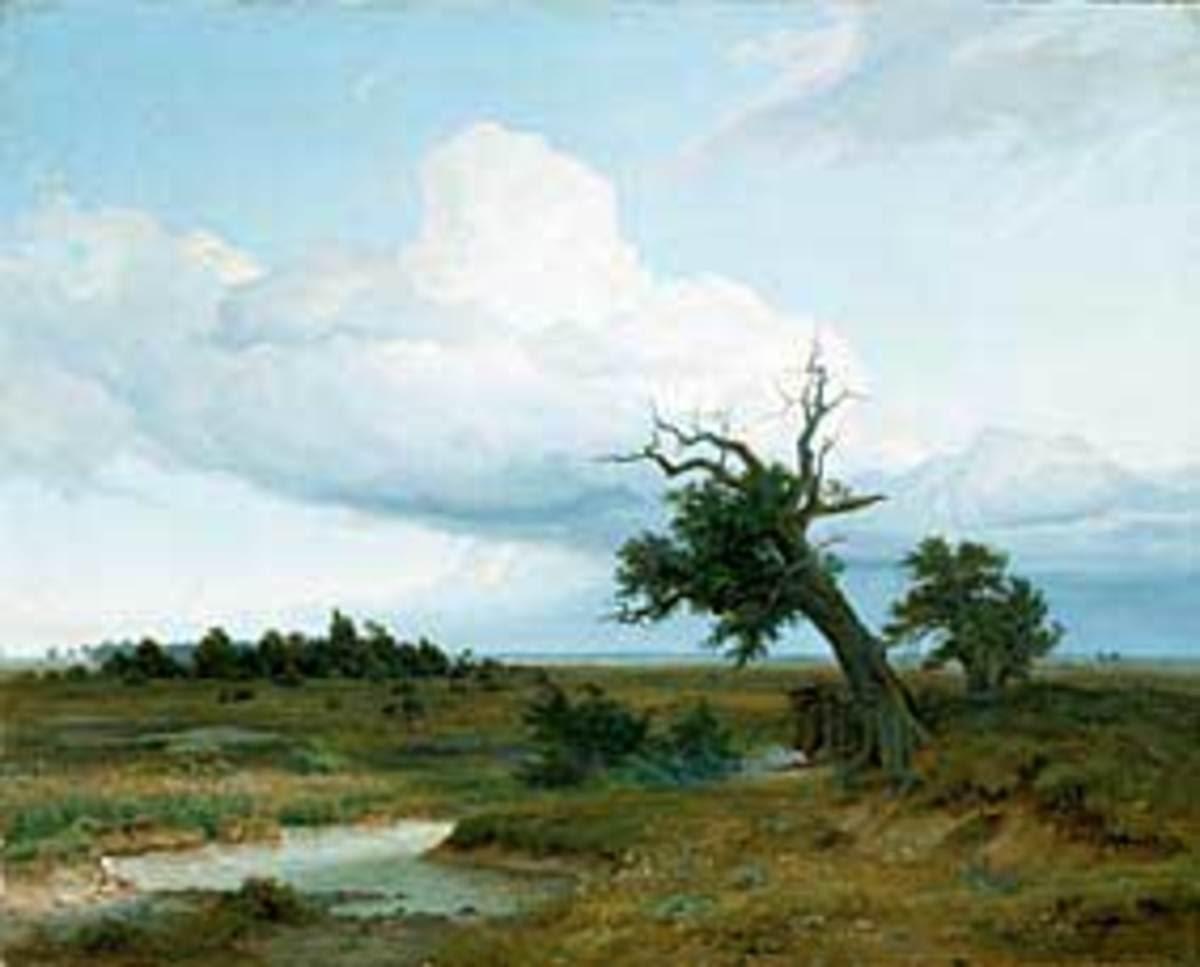 Landschaft mit absterbender Eiche