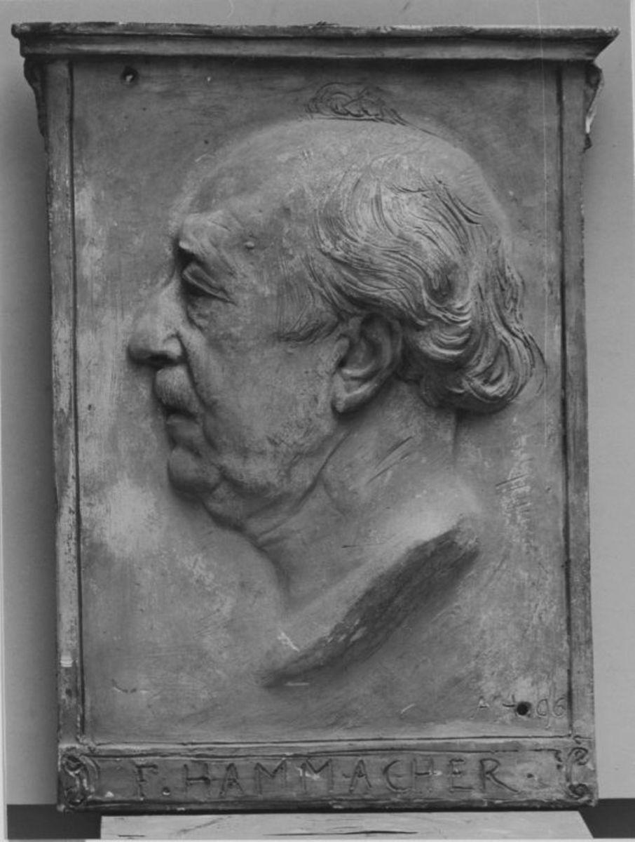 Der Politiker Friedrich Hammacher