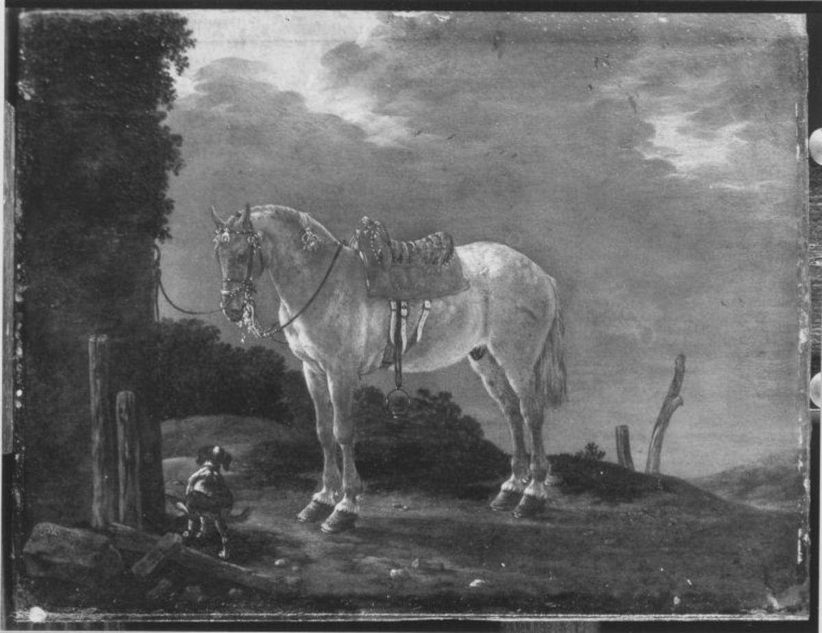 Ein gesatteltes Pferd