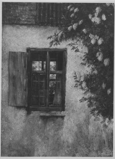 Ecke eines Landhauses mit rotverhängtem Fenster (Altes Haus mit Holunder)