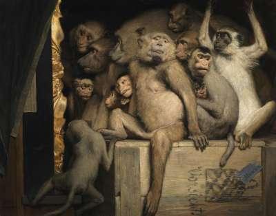 Affen als Kunstrichter
