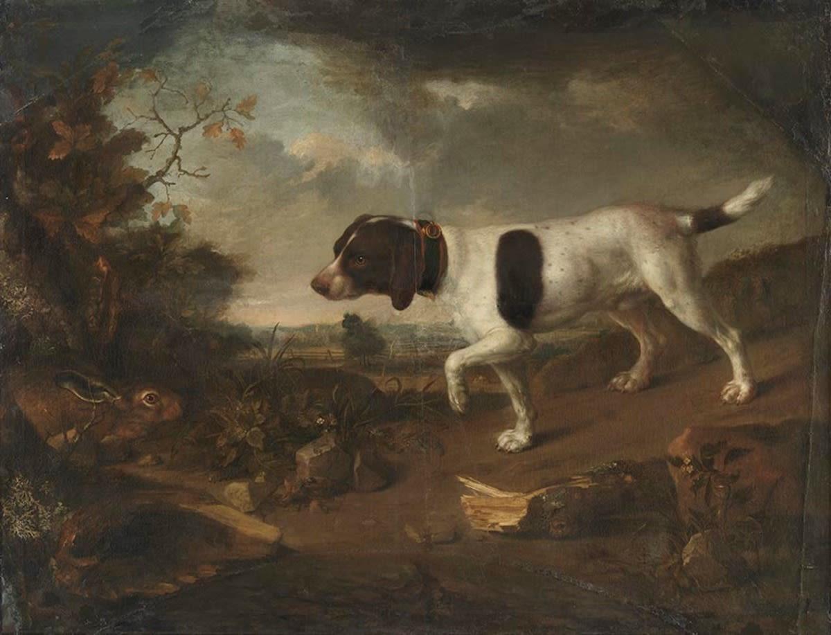 Hund und Hase