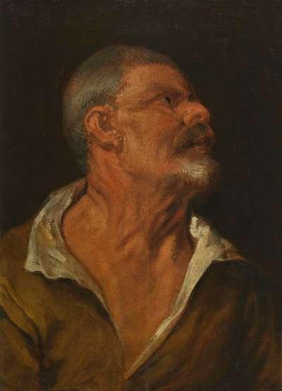 Studienkopf eines Mannes im Profil, nach rechts blickend