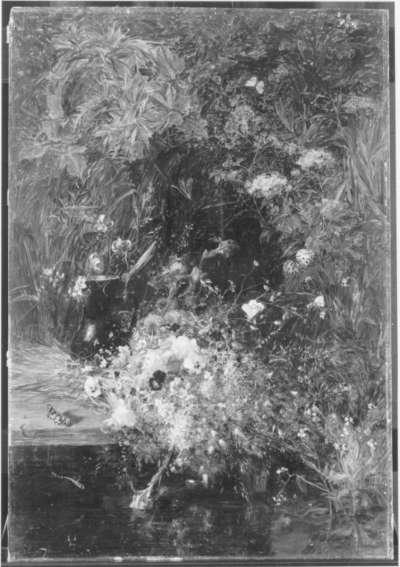 Feldblumen am Wasser (Frühlingsblumen)