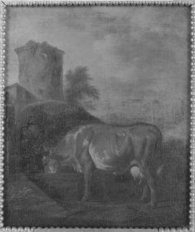 Kuh und Hirte
