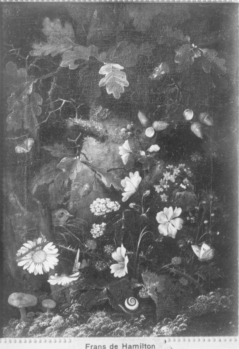 Stillleben: Pilze vor Eichenstamm
