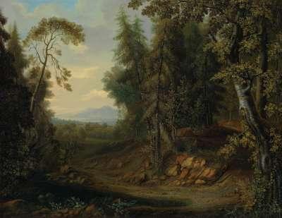 Waldlandschaft