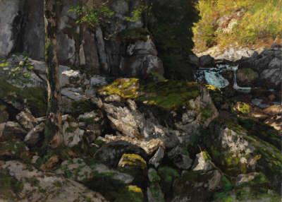 Felsige Waldlandschaft