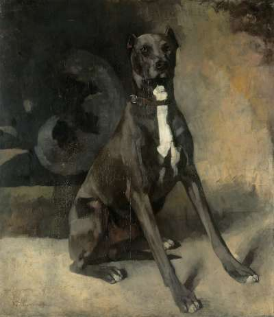 Sitzende Dogge