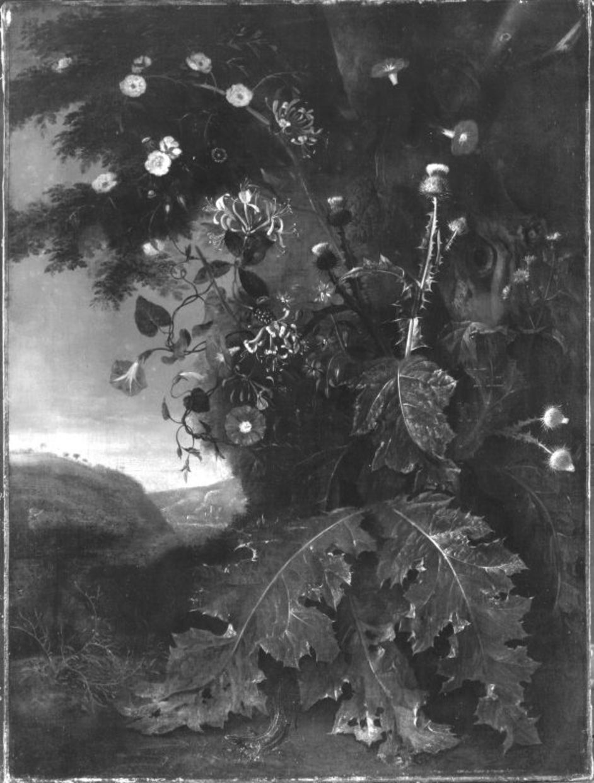 Blumen- und Distelstück in einer Landschaft