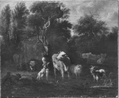 Vieh und Hirte