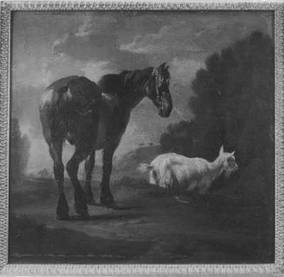 Pferd und Ziege in Landschaft