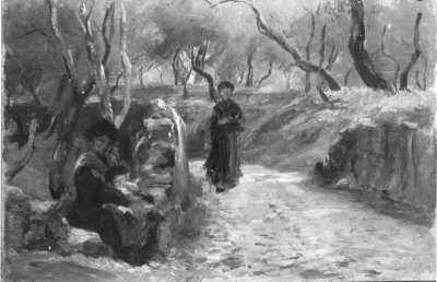Hohlweg im Olivenhain (S. Terenzo)