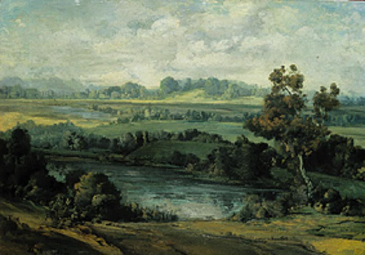 Wiesenlandschaft