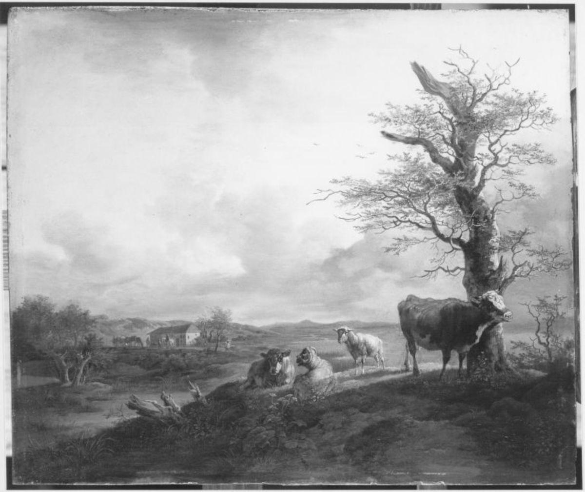 Kuh, Kalb und Schafe unter einer Buche