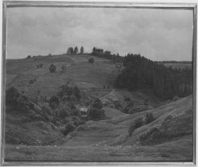 Harzlandschaft bei Andreasberg
