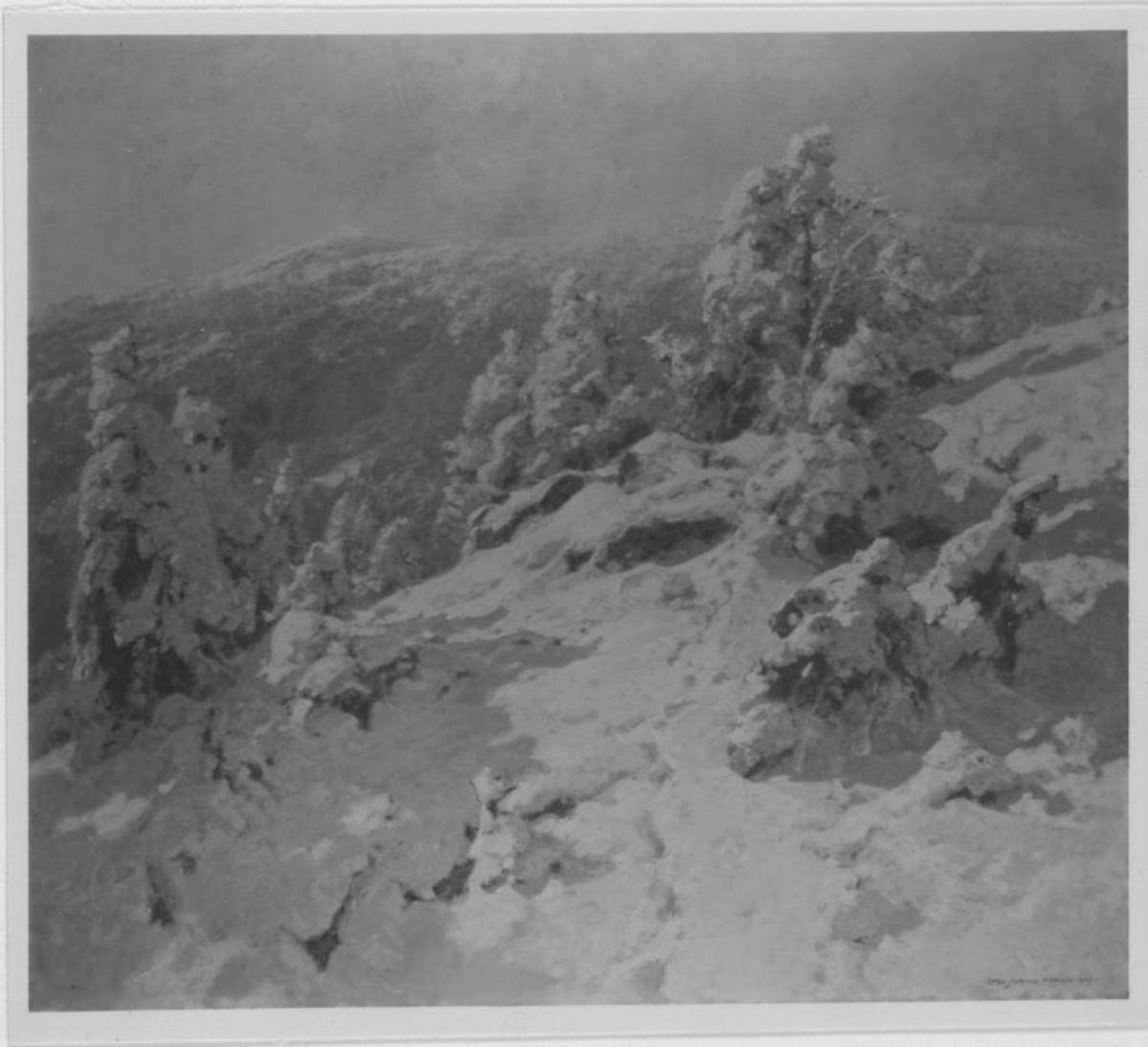 Schneelandschaft (Tiefer Schnee)