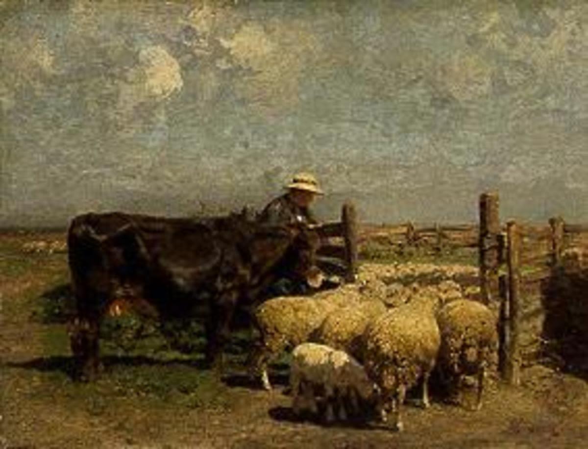 Am Schafpferch