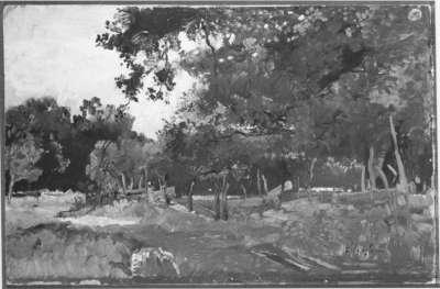 Waldlandschaft bei Pang