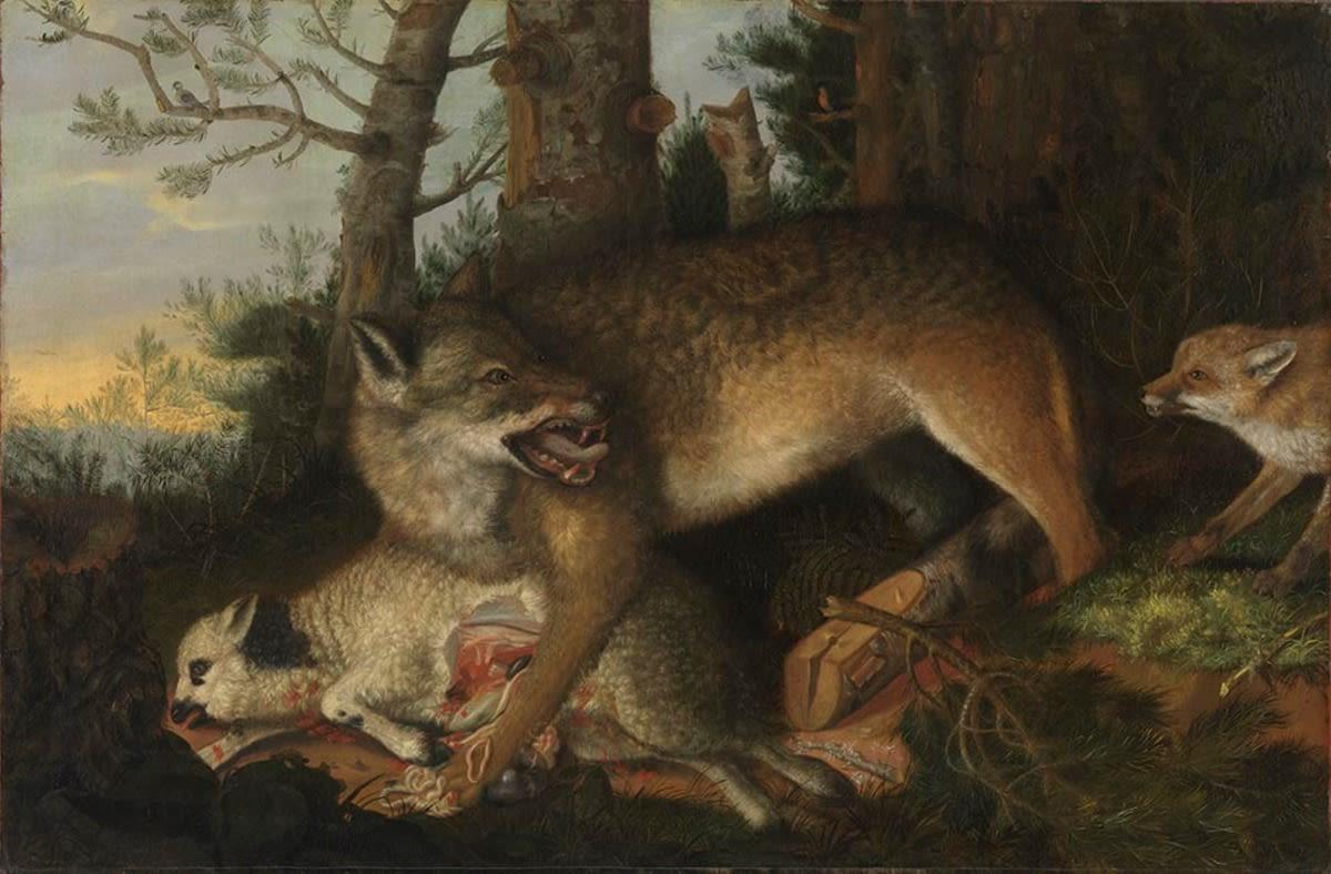 Wolf und Fuchs