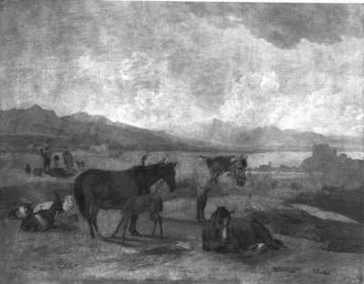 Pferdeweide am Starnberger See