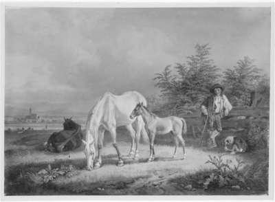 Pferdeweide bei Sendling