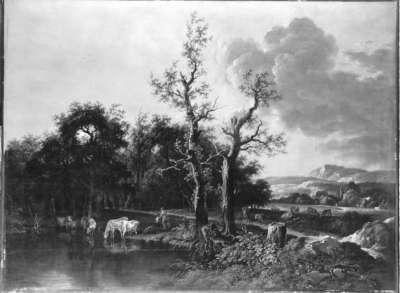 Waldrand mit Rindern am See