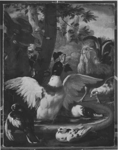 Enten und Hühner