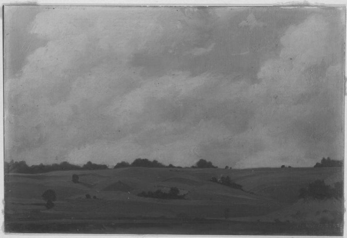 Landschaft (Zolling bei Freising)