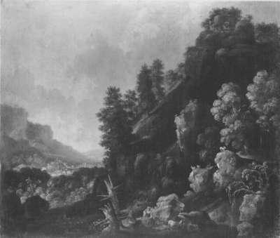 Wildnislandschaft mit Wasserfall