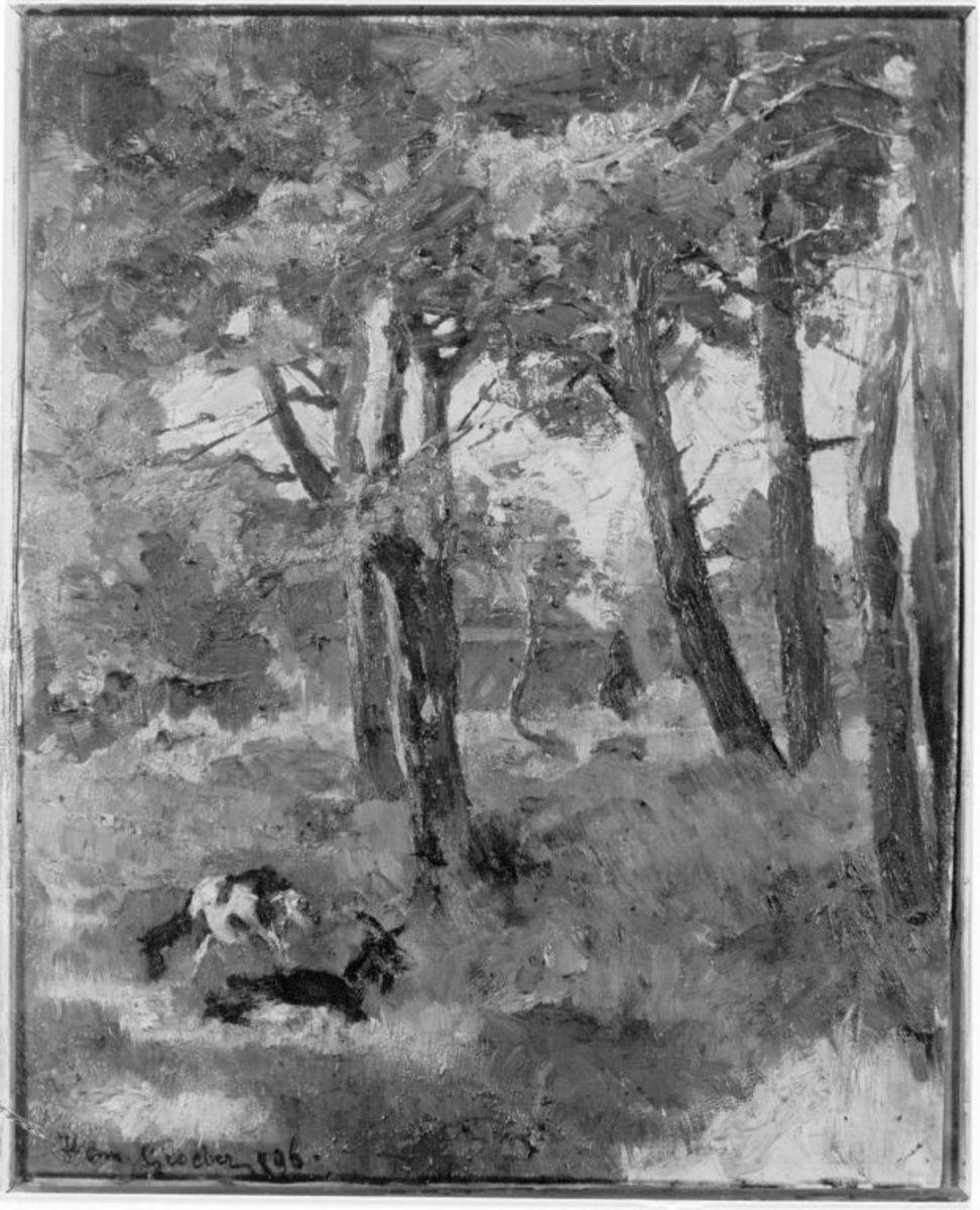 Wald mit zwei Ziegen