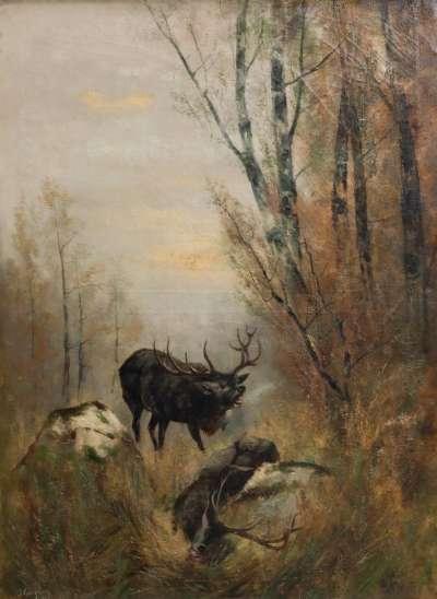 Waldlandschaft mit Hirsch