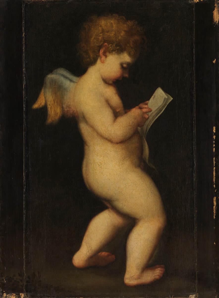 Lesender Amor