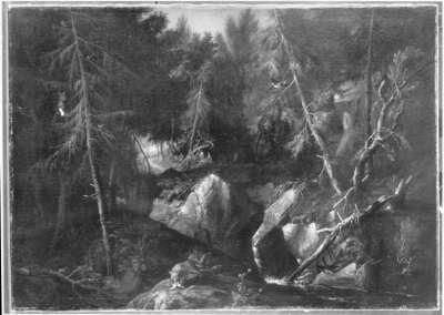 Baumwildnis mit Füchsen und Vögeln