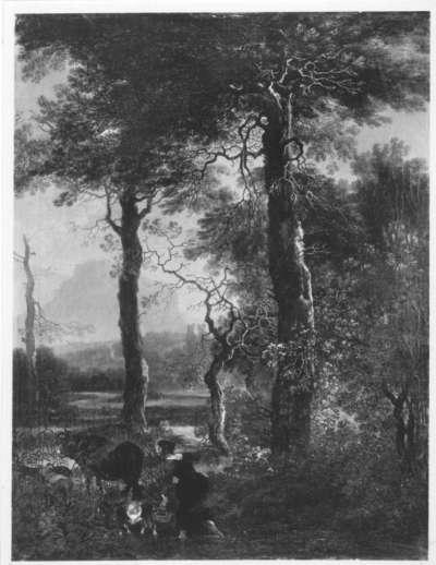 Landschaft mit hochstämmigen Bäumen