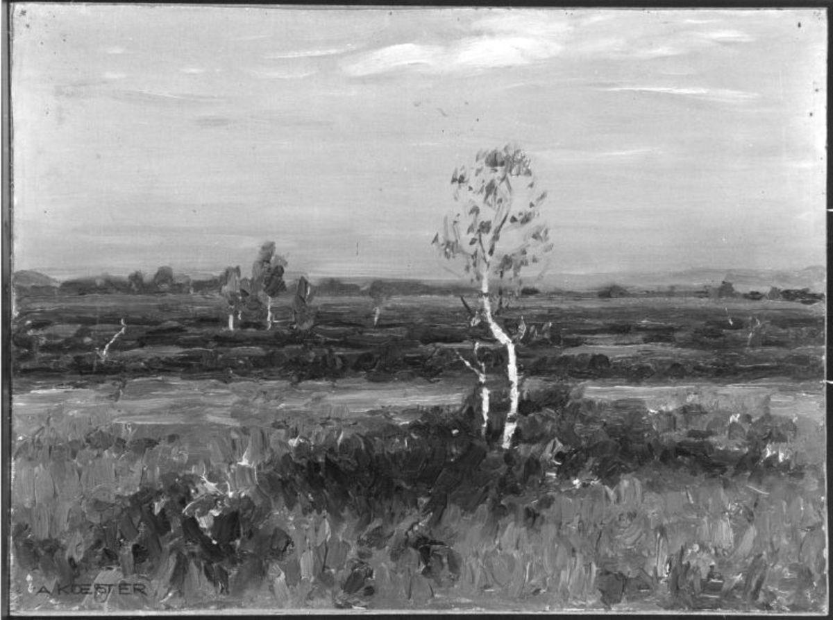 Landschaft mit Birke