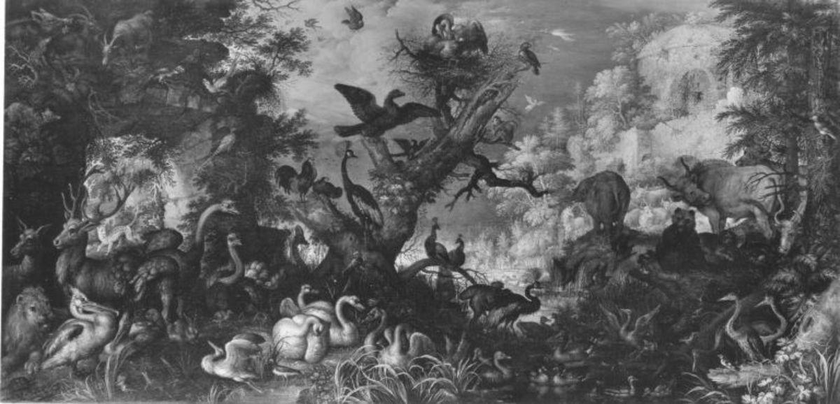 Vögel und Tiere in Felslandschaft