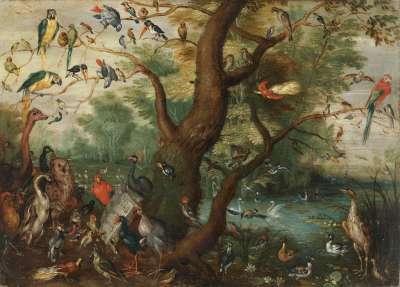 Das Vogelkonzert