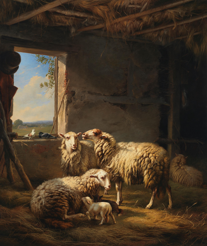 Holländischer Schafstall