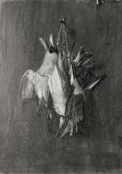 Stillleben mit vier toten Vögeln