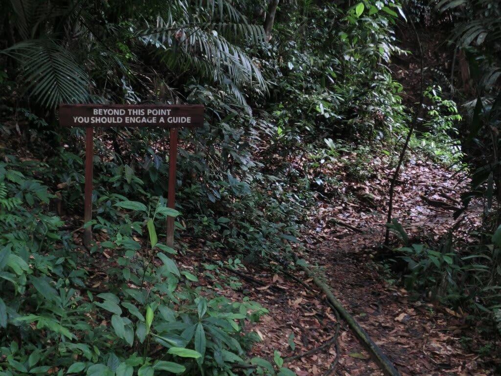 Warnschild im Dschungel
