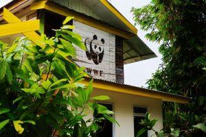 WWF in Sumatra