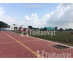 Bán đất thành phố Bà Rịa Vũng Tàu 1,25n tỷ( 250m2) ngay QL51 đi vào  - Hình ảnh 1/6