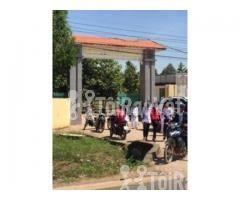 Đất đầu tư khu dân cư Nha Bích Chơn Thành giá rẽ có thổ cư SHR - Hình ảnh 3/5